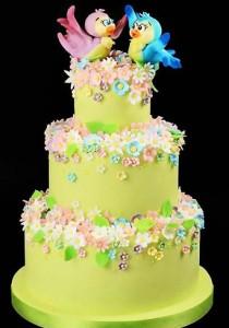 کیک تولدزیبا بچه گانه مدل پرنده