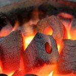 راه اندازی خط تولید زغال فشرده